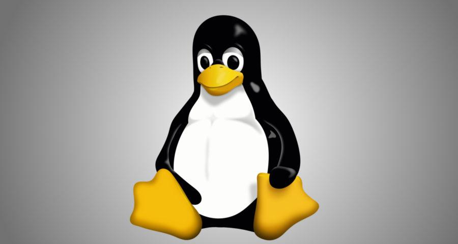 Tux, la mascotte officielle de Linux